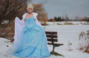 Cinderella - Winter Costume
