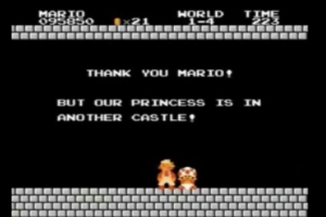 """The princess is in another castle."""