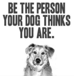 Be the person your dog thinks you are.